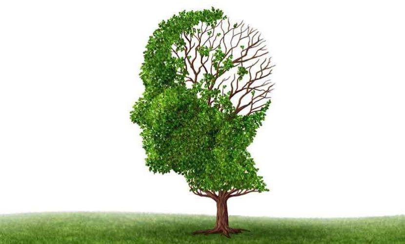 Νευρολογία εικόνα