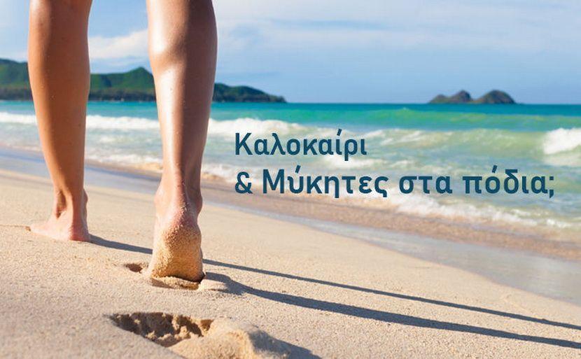 καλοκαίρι - Μύκητες εικόνα