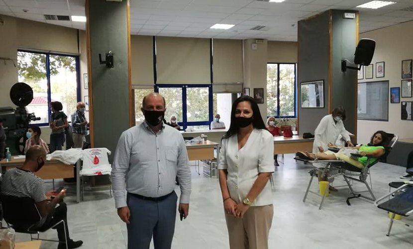 Αιμοδοσία Δήμος Διονύσου εικόνα