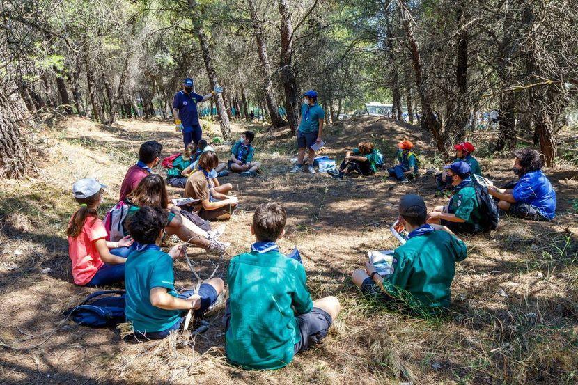 Εθελοντικός καθαρισμός δασών - Δήμος Κηφισιάς
