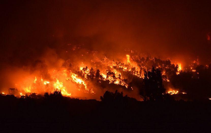 πυρκαγιά Δήμος Διόνυσος